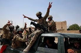 17 Daesh militants killed in Iraq's Diyala
