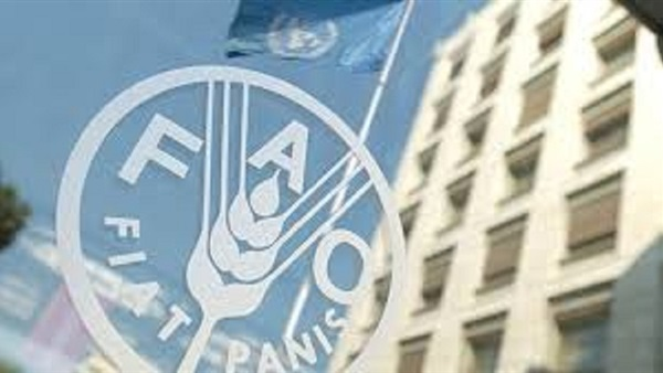 Agriculture minister to attend FAO regional conf  in Sudan