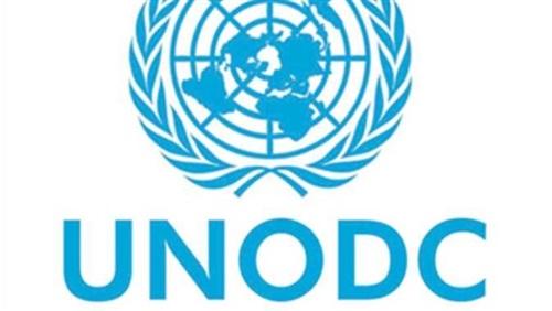 UN official: Dlrs 2.7 allocated for delinquent children's reintegration programs in Egypt