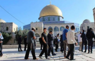 Aqsa Mosque guards, Jewish settlers clash near Al Rahma Gate