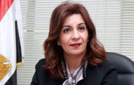 Immigration minister: Egyptian expats showed strong affiliation to their homeland