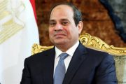 Sisi's first presidential term