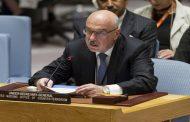UN official lauds Egypt's anti-terrorism efforts