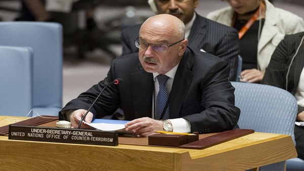 UN official lauds Egypt's anti-terrorism efforts