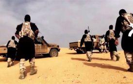 """Al-Qaeda"" reforms its cluster cells inside Egypt"