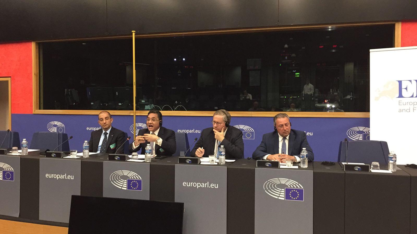 Ali warns against prevalence of Brotherhood ideology in Europe