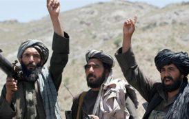 Summer holidays: Taliban season to revive combat movement