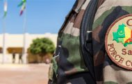 A new fighter against terrorism in African Sahel region