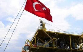 Brotherhood, Turkey in gas war against Egypt