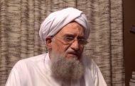 Documents reveal allegiance to al-Qaeda leadership in event of Zawahiri's death
