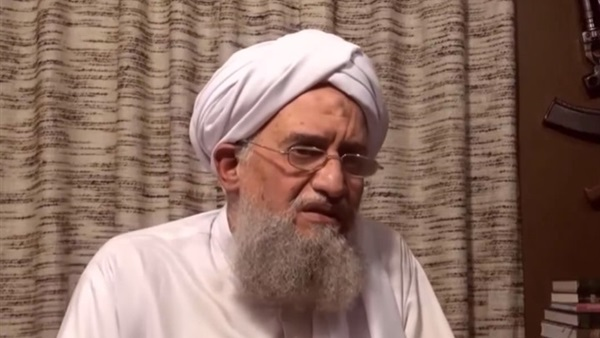 Documents reveal allegiance to al-Qaeda leadership in event of Zawahiri's death