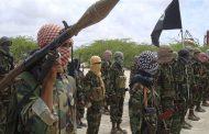 Hidden hands: Somali government fighting terrorist penetration