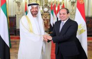 Sisi, bin Zayed witness inking of cooperation agreements