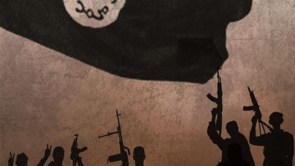 Defense Department watchdog says Daesh used US withdrawal to regroup, reemerge
