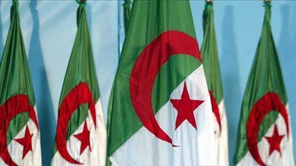 Thirty years of opportunism: Brotherhood of Algeria and a history of political stupidity and failed initiatives