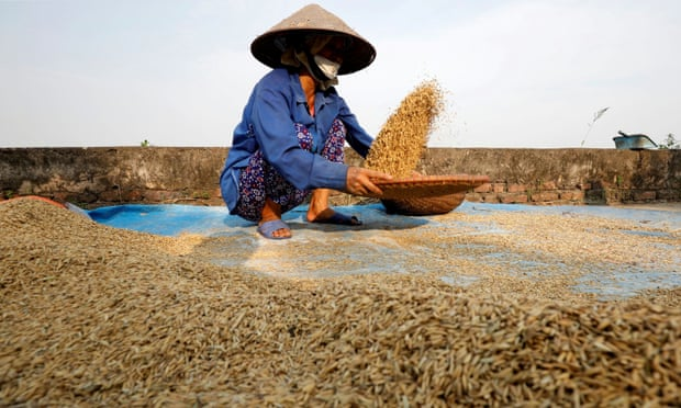 Coronavirus measures could cause global food shortage, UN warns
