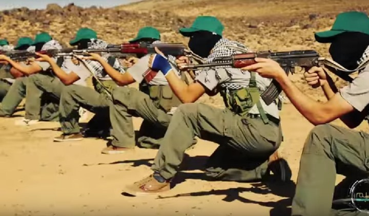 Classifying Hasm as terrorist organization entails considering Brotherhood as well