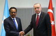 Farmaajo and Turkey ignite Somalia