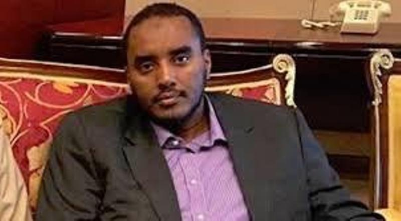 Fahad Yasin: Qatar's saboteur in Somalia in collusion with Farmaajo