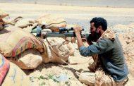 Over 100 Houthis Killed in Hajjah, Marib Battles
