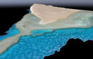 NEOM Partners with KAUST to Create World's Largest Coral Garden