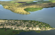 Lake Chad countries develop programs to attract defectors from terrorist groups