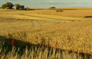Russian hackers target US food and grain production