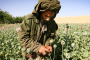 Afghan farms will keep supplying the world's opium