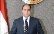 Egypt's FM: Cairo-hosted Fatwa conference new contribution to fighting extremist ideology