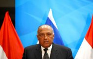 Interfering in domestic affairs causes repercussions: Egypt's Foreign Minister
