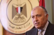 Egypt's FM in Istanbul to lead Cairo delegation in OIC