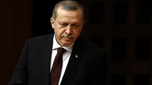 Geography professor: Arab countries must unite against Erdogan's ambitions