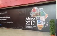 """Today: """"Africa 2017 conference"""" under auspices of Egypt's Sisi"""