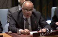 UN member countries unanimously agree on Egyptian resolution, US vetoes