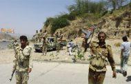 46 Houthi militias killed in raids