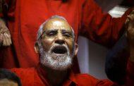 Terrorist Brotherhood and its impact on recent judicial rulings