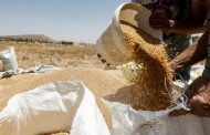 Syrian Drought Puts Assad's 'Year of Wheat' in Peril