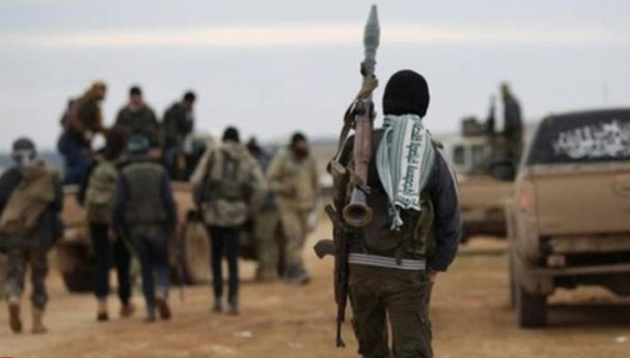 Details of return of HTS lone wolves in Germany